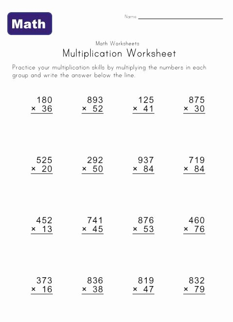 Multiplication Worksheets Grade 5 3 Digit by 2 Digit Unique Multiple Digit Multiplication Worksheets